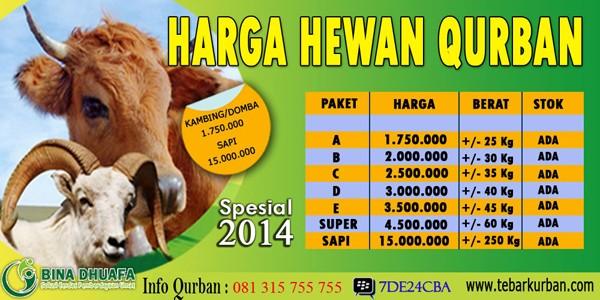 Daftar Harga Kambing Qurban 2014