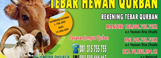 Harga Kambing Qurban 2016