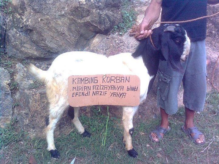 Tebar Kurban Nusantara